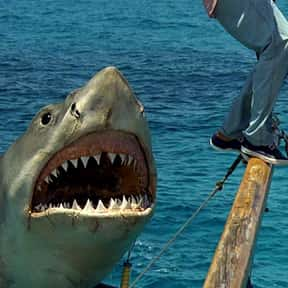 Jaws is listed (or ranked) 5 on the list Horror Movies That Don't Look Like Horror Movies