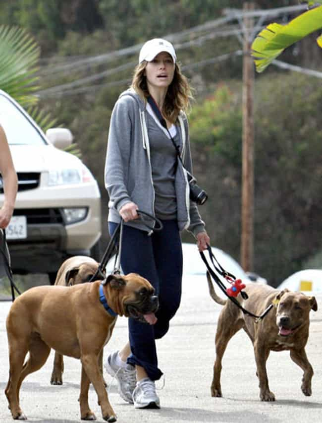 Jessica Biel is listed (or ranked) 1 on the list The Best Photos of Celebrities Walking Their Dogs