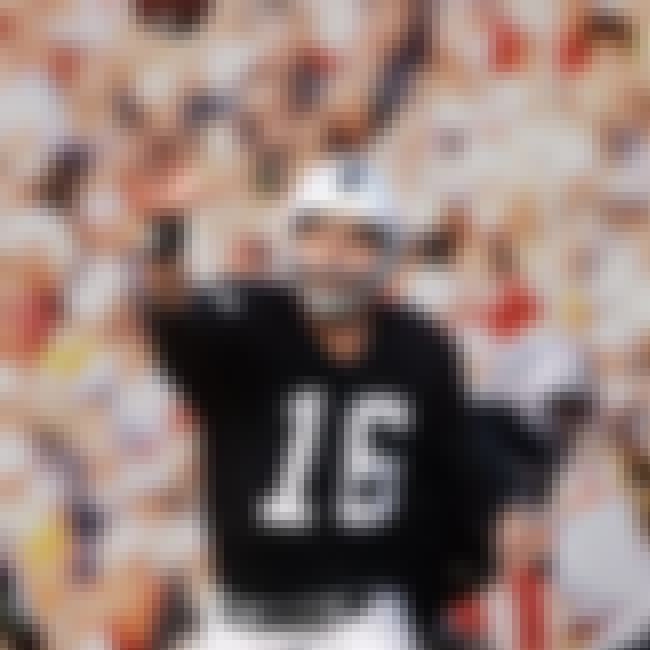 Jim Plunkett is listed (or ranked) 3 on the list The Best Backup Quarterbacks to Reach a Super Bowl