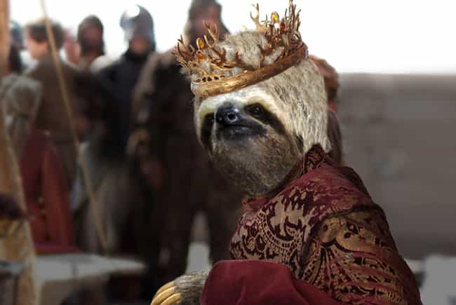 Joffrey Baratheon is listed (or ranked) 4 on the list 13 Game of Thrones Characters as Sloths