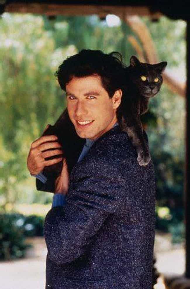 John Travolta is listed (or ranked) 7 on the list 75+ Celebrities Who Are Cat People