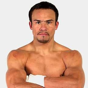 Juan Manuel Márquez is listed (or ranked) 16 on the list The Best Boxers of the 21st Century