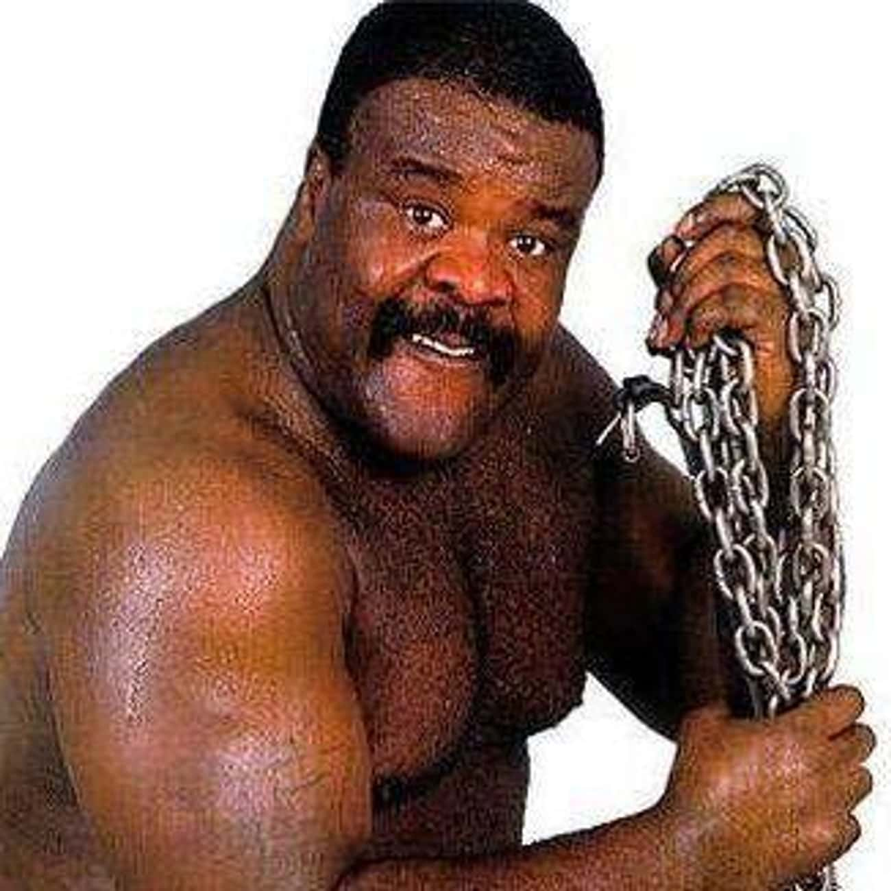 Junkyard Dog is listed (or ranked) 1 on the list The Best (and Worst) Animal Based Gimmicks in Wrestling History