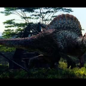 Jurassic Park III is listed (or ranked) 19 on the list The Best Adventure Movies That Take Place in the Jungle