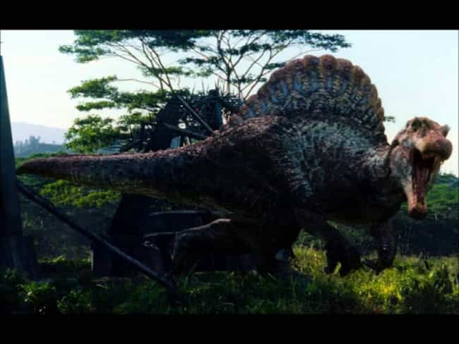 Jurassic Park III is listed (or ranked) 4 on the list The Best Movies In The 'Jurassic Park' Franchise