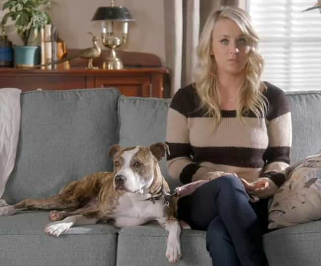 Kaley Cuoco is listed (or ranked) 4 on the list 28 Celebrities Who Adopted Pit Bulls