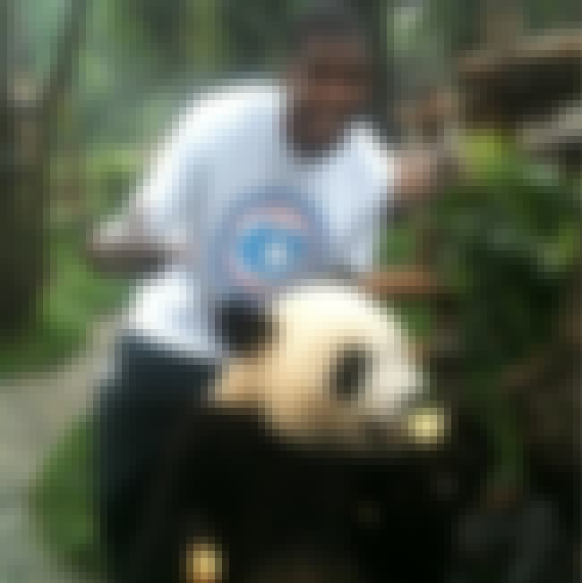 Kevin Durant is listed (or ranked) 4 on the list The Top 17 Photos of Celebrities with Pandas