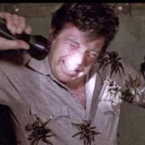 Kingdom of the Spiders is listed (or ranked) 8 on the list Movies That Have Spiders In Them