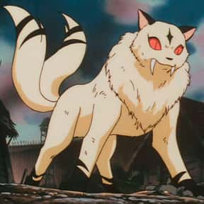 Kirara is listed (or ranked) 1 on the list The Best Animal Characters in Anime