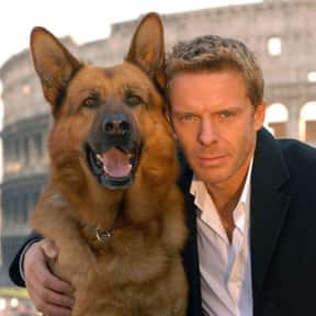 Inspector Rex is listed (or ranked) 2 on the list The Best TV Shows Set In Italy