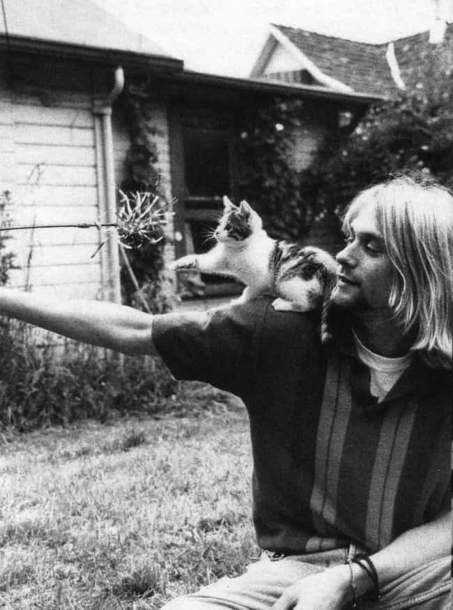 Kurt Cobain is listed (or ranked) 4 on the list Cool Old Photos of Celebrities with Their Cats