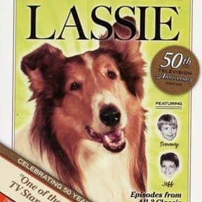 Lassie is listed (or ranked) 14 on the list The Greatest Dog Movies Of All Time