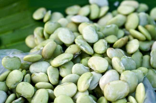 Lima Bean is listed (or ranked) 4 on the list 17 Foods That Can Kill You
