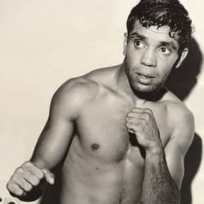 Lionel Rose is listed (or ranked) 9 on the list The Best Bantamweight Boxers of All Time