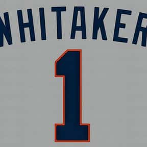 Lou Whitaker is listed (or ranked) 13 on the list List of Famous Baseball Second Basemen