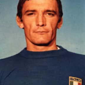 Luigi Riva