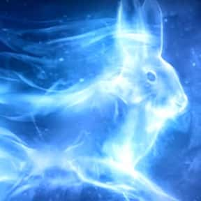 Luna Lovegood - Hare is listed (or ranked) 13 on the list EveryPatronus In'Harry Potter,' Ranked By How Much You Wish It Was Yours