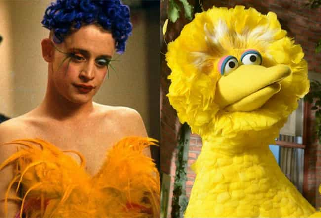 Macaulay Culkin is listed (or ranked) 4 on the list Child Stars Who Grew Up to Look Like Muppets