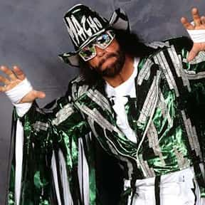 Macho Man Randy Savage is listed (or ranked) 15 on the list The Best WCW Wrestlers of All Time