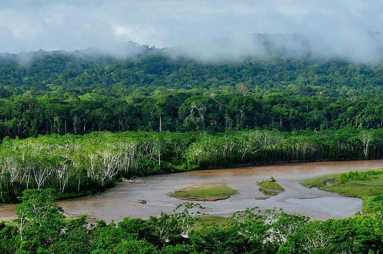 Madidi National Park Is Filled is listed (or ranked) 4 on the list The Most Dangerous Locations That People Have Actually Tried To Visit