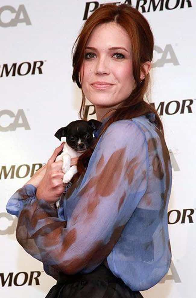 Mandy Moore is listed (or ranked) 6 on the list 26 Celebrities Who Have a Ton of Pets
