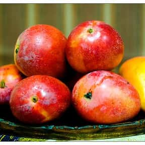 Mango is listed (or ranked) 1 on the list The Best Tropical Fruits