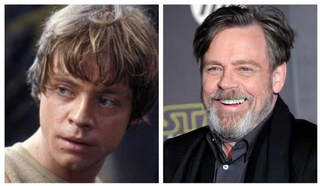 Mark Hamill is listed (or ranked) 4 on the list 12 One-Hit Wonder Actors Who Got A Big Break But Went Back To Not Doing Much