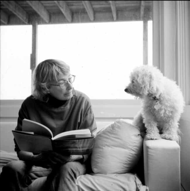 Mary Oliver is listed (or ranked) 4 on the list 32 Famous Lesbian Poets Who Heavily Influenced Modern Poetry