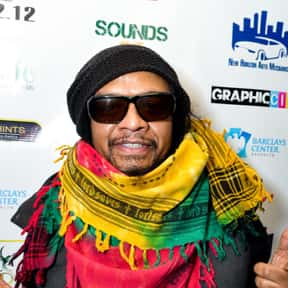Maxi Priest is listed (or ranked) 6 on the list The Best Reggae Fusion Bands/Artists