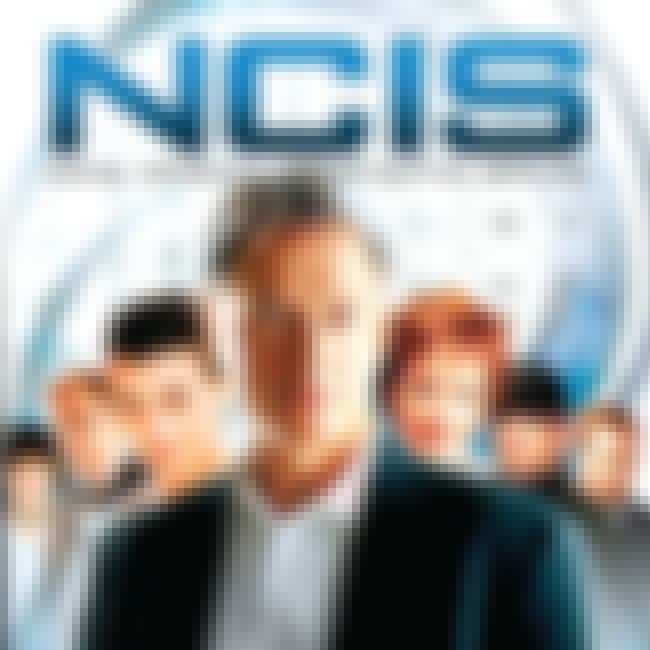 NCIS - Season 5 is listed (or ranked) 2 on the list The Best Seasons of NCIS