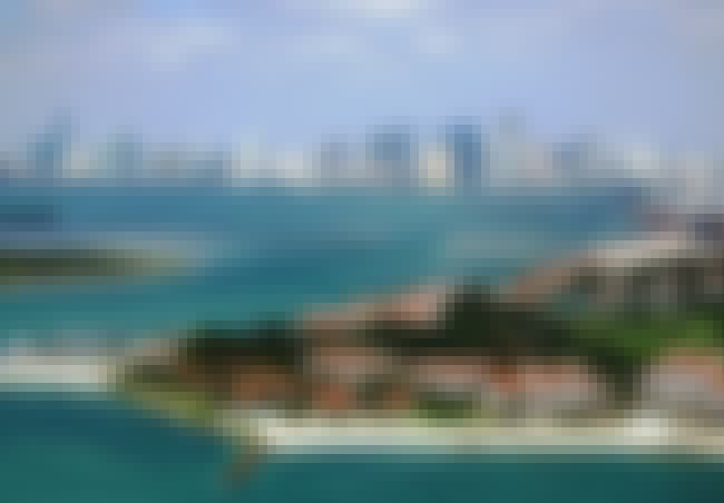 Miami is listed (or ranked) 2 on the list What Cities Are Best For You, Based On Your Zodiac Sign