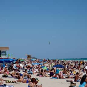Miami Beach is listed (or ranked) 1 on the list The Best Spring Break Destinations