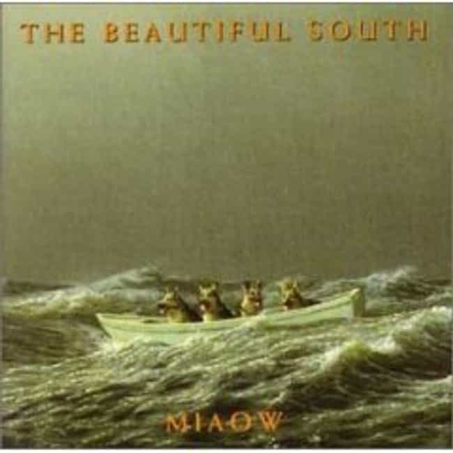 Miaow is listed (or ranked) 4 on the list The Best Beautiful South Albums of All Time