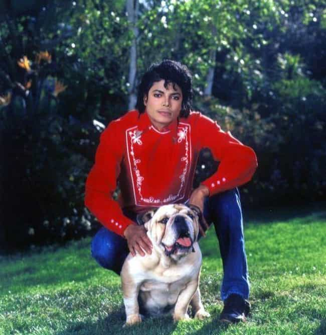 Michael Jackson is listed (or ranked) 7 on the list 26 Celebrities Who Have a Ton of Pets