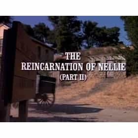 The Reincarnation of Nellie (1)