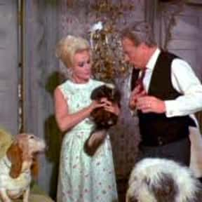 His Honor is listed (or ranked) 23 on the list The Best Green Acres Episodes