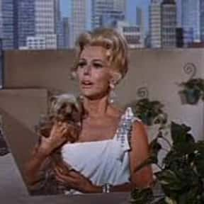 Music to Milk By is listed (or ranked) 1 on the list The Best Green Acres Episodes