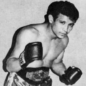 Miguel Canto is listed (or ranked) 8 on the list The Best Flyweight Boxers of All Time