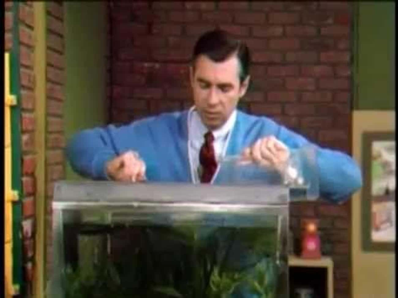 Mister Rogers' Neighborhood is listed (or ranked) 4 on the list Every Time A Children's TV Show Or Movie Dealt With Death