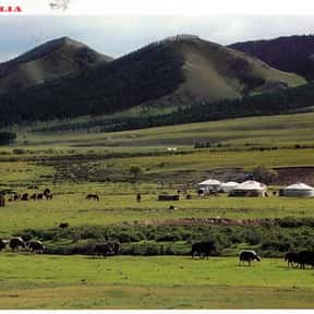 Mongolia is listed (or ranked) 21 on the list The Best Asian Countries to Visit