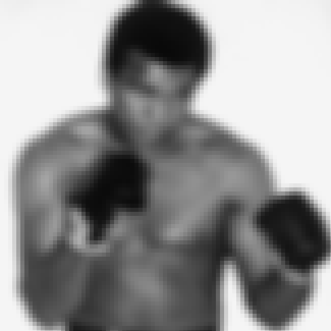 Muhammad Ali is listed (or ranked) 1 on the list Famous Male Professional Boxers
