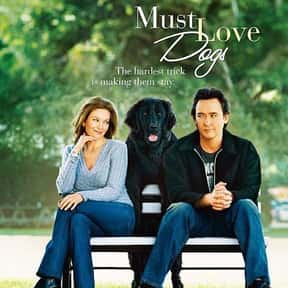 Must Love Dogs is listed (or ranked) 10 on the list The Best Diane Lane Movies