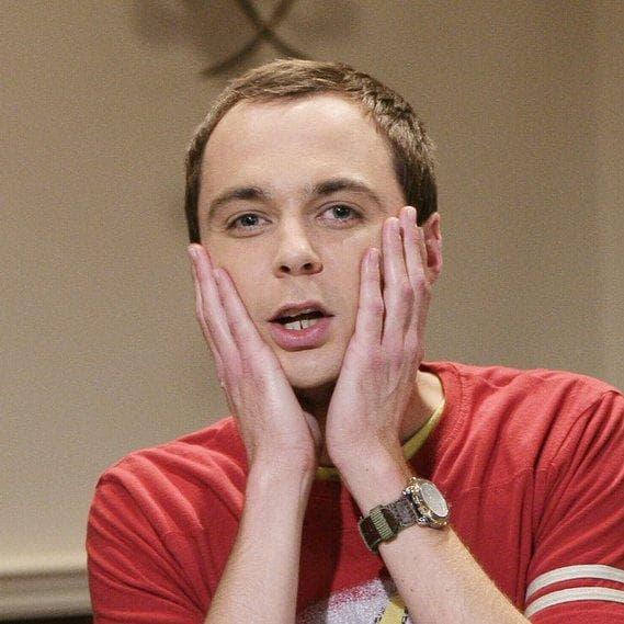 Random Best The Big Bang Theory Characters
