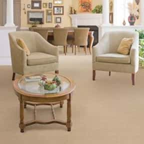 Avalon Books is listed (or ranked) 16 on the list The Best Carpet Brands