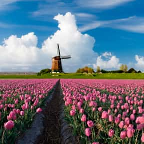 Netherlands is listed (or ranked) 1 on the list The Best Countries to Travel Alone