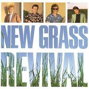 New Grass Revival is listed (or ranked) 13 on the list List of Famous Bands from Louisville