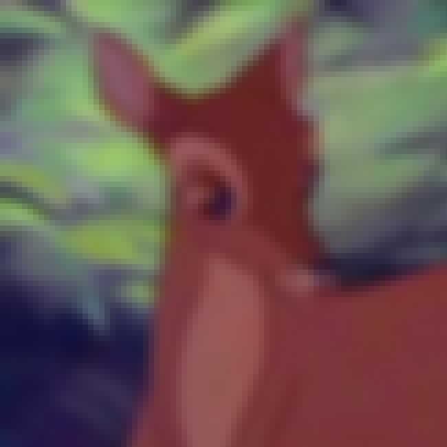 Bambi's Mother is listed (or ranked) 2 on the list The Saddest Deaths in Kids Movies