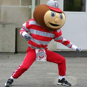 Ohio State University is listed (or ranked) 20 on the list Universities With The Dumbest College Mascots