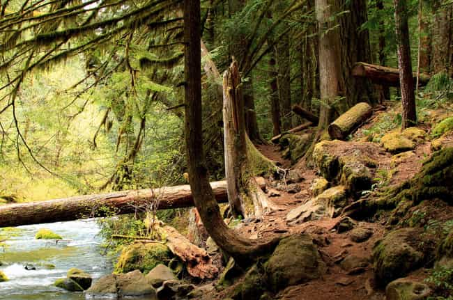 Oregon is listed (or ranked) 4 on the list The Best U.S. States for Hiking