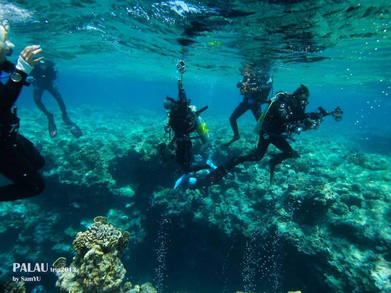 Palau is listed (or ranked) 3 on the list The Best Countries for Scuba Diving